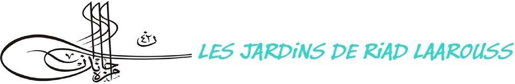 LES JARDiNS DE RiAD LAAROUSS